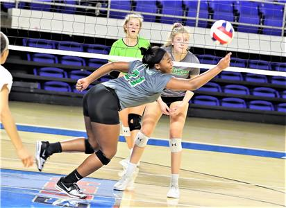 Junior setter Hillary English, who had 77 assists in East Hamilton's two Class 2A state volleyball tournament matches on Tuesday, this one a stretched out effort against Knoxville Catholic, added 40 more Wednesday in the Lady Canes' 3-1 victory over Sullivan South in a loser's bracket showdown.