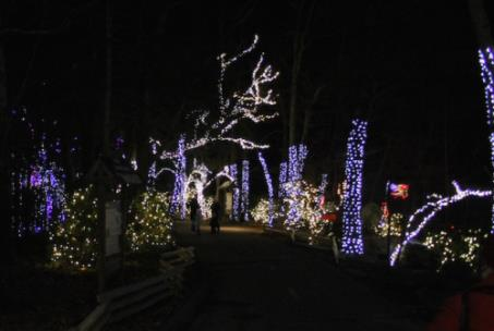 Photos Rock City S Enchanted Garden Of Lights Chattanoogan Com