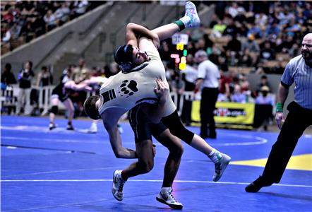 Bradley Central's Wesley Devaney, front and airborne, finds himself upended and headed for the zero-points end of a takedown perpetrated by Walker Valley's Chandler Davis during a consolation match in the AAA 113-pound classification Friday at the State Wrestling Tournament in Franklin. Devaney reversed the tables on Davis and won by an 8-5 decision.