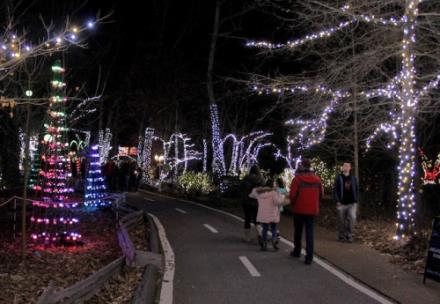 Rock City S Enchanted Garden Of Lights Is Underway Chattanoogan Com