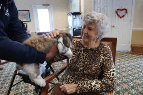Morning Pointe of Collegedale at Greenbriar Cove resident Carlene Filler pets the Angora rabbit brought by Chattanooga Zoo Activities Coordinator James Brantley