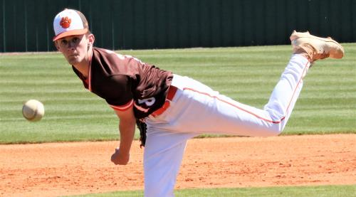 Grissom High School's left-handed pitcher Daniel James checked Ooltewah on three hits and struck out 14 Friday in the Tigers' 7-2 win over the Owls in the Ooltewah Invitational. James fanned seven straight Owls during one stretch.