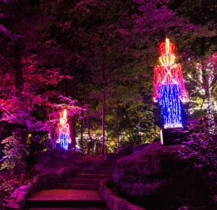 Rock City S Enchanted Garden Of Lights Opens Nov 20 Chattanoogan Com