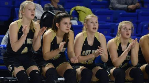The Upperman bench reacts to a play during a game at the TSSAA BlueCross Division I Girl's Championships earlier this month at MTSU's Murphy Center. Both the Bees and Lady Bees had players whose homes were destroyed in the recent Nashville-area tornadoes.