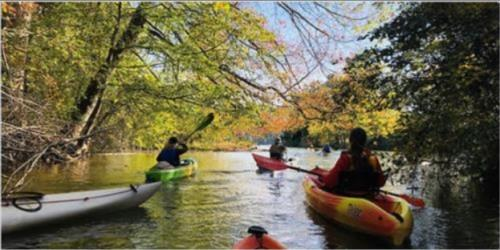 Kayakers paddle down Tennessee RiverLine in Roane County
